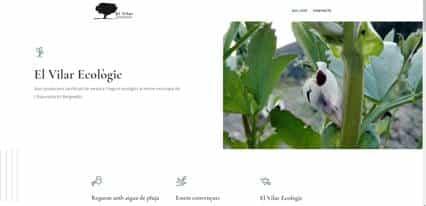 disseny web berga barcelona